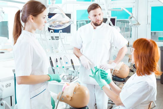 What should i major in to become a dentist?